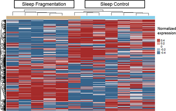 Heatmap clustering of differentially expressed genes in plasma exosomes derived from SF(−) and SC(−) treated with TC1 cells in