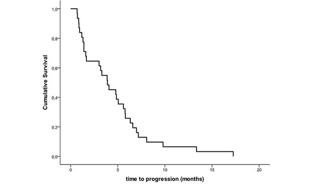 Kaplan-Meier Estimates of Progression-free Survival.