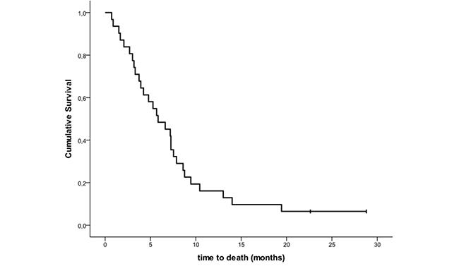 Kaplan-Meier estimates of overall survival.