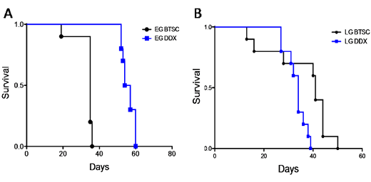 EG-BTSCs are more lethal and differentiation sensitive than LG-BTSCs.
