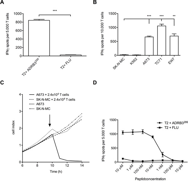 Functional evaluation of ADRB3295-TCR transgenic T cells.