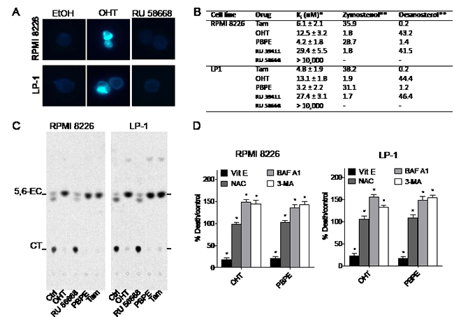 OHT and AEBS ligands induce the accumulation of cholesterol precursors in HMCLs.