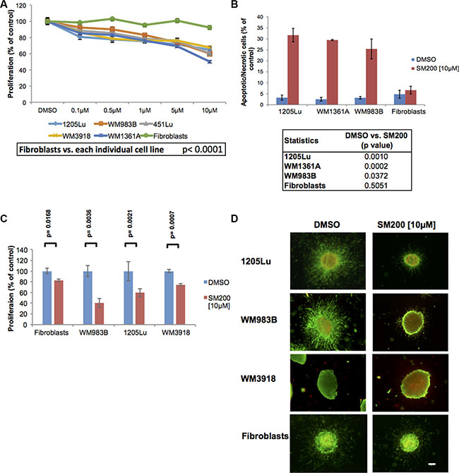 SM200 inhibits proliferation and invasion of 2D and 3D melanoma cells.