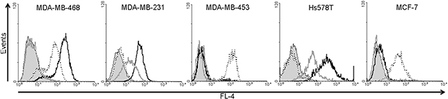 Analysis of EGFR, EpCAM and CSPG4 protein expression in MDA-MB-468, MDA-MB-231, MDA-MB-453, HS578T and MCF7 cell lines.