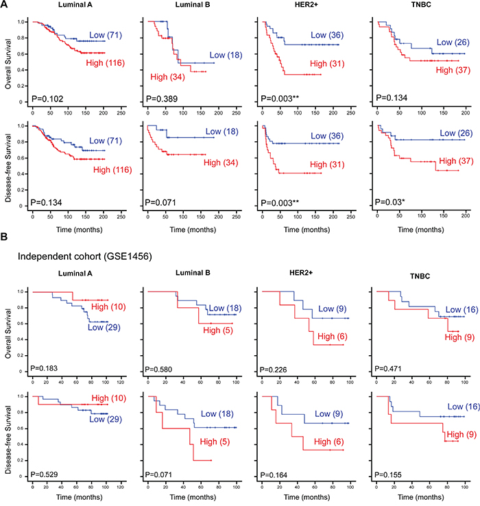 CTMP is associated with poor survival and early recurrence in HER2-enriched breast cancer.