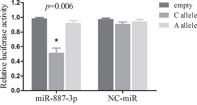 Dual luciferase reporter gene assays with constructs containing different alleles of MDM4 3'-UTR region or pGL3-control vector (empty) were co-transfected with miR-887-3p mimics or NC-miR in the NSCLC A549 cells.