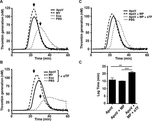 Thrombin generation assays B16-F1-derived EV.
