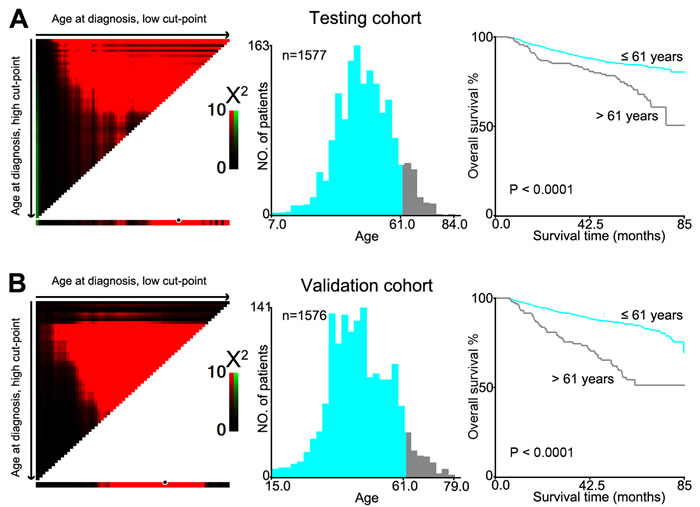 X-tile plots were utilized to determine the cutoff value of the age at diagnosis on NPC cohorts.