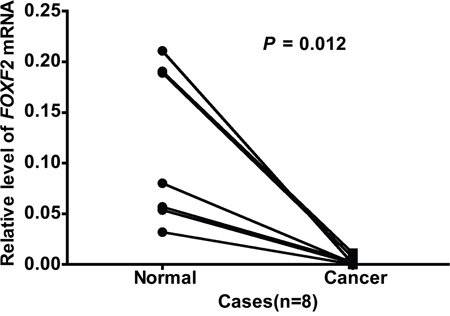 Comparison of FOXF2 mRNA expression in paired lung tumor tissues and normal tissues.