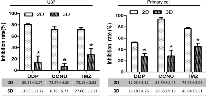 Inhibition of growth of U87 and primary glioma cells by DDP, CCNU and TMZ in 2D vs. 3D culture.