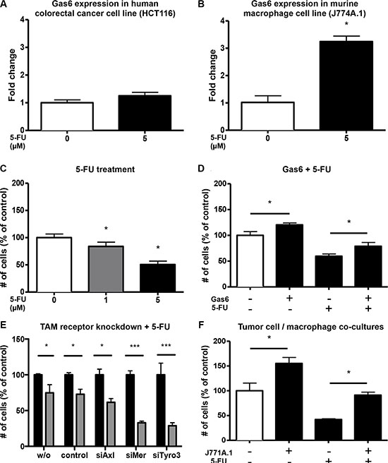 Macrophages upregulate Gas6 under 5-FU treatment and mediate a chemoprotective effect.