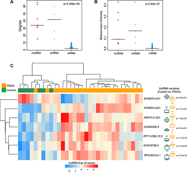 The lncRNA ceRNAs are more critical components compared to mRNA ceRNAs in the DLCN.