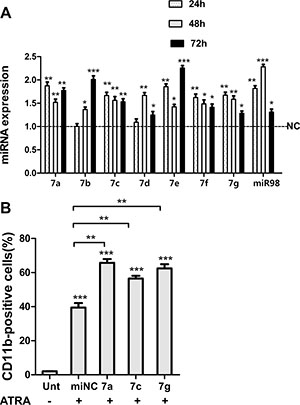 Let-7 miRNAs promoted granulocytic differentiation of NB4 cells.
