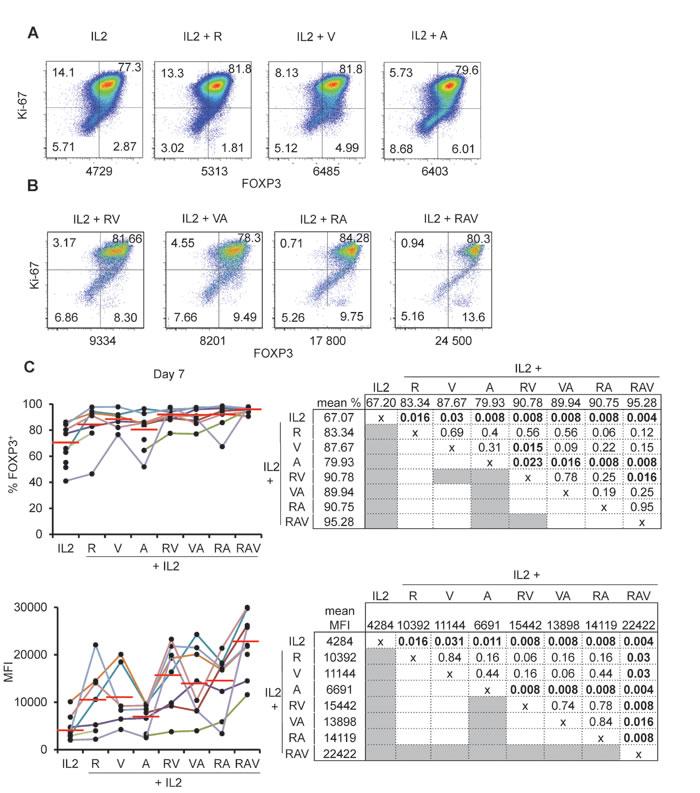 nTreg FOXP3 expression following expansion under IL-2, rapamycin, azacytidin and vorinostat combinations.