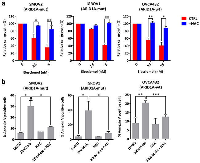 Treatment with elesclomol inhibits cancer cell growth and induces apoptosis by increasing ROS levels.