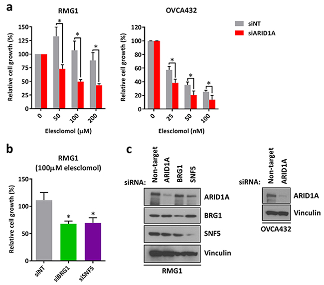 Knockdown of ARID1A expression in ARID1A-wildtype ovarian cancer cells results in increased sensitivity to treatment with elesclomol.