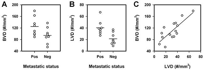 Blood vessel density (BVD), lymph vessel density (LVD), and lymph node metastasis in human cervix carcinoma.