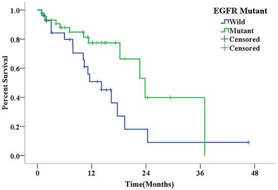 Kaplan-Meier curves for overall survival in patients with different EGFR mutation statuses after the diagnosis of final brain metastasis (P=0.028).