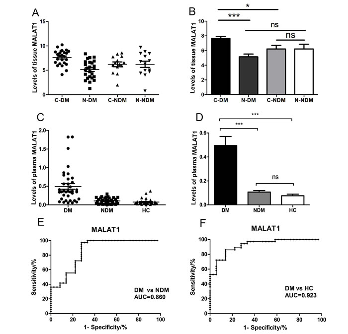 Relative tissue and plasma MALAT1 expression levels and its clinical significance in gastric cancer patients and healthy controls.
