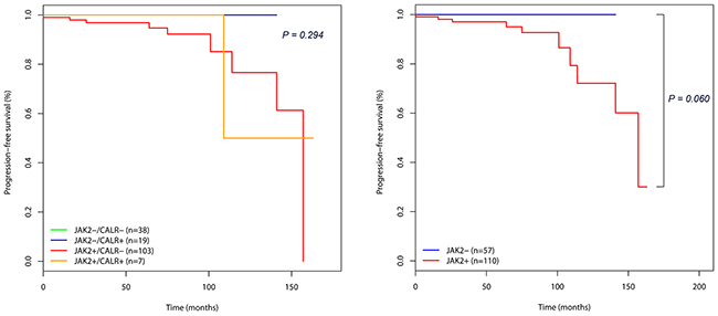 Kaplan-Meier survival curves showing the progression-free survival (PFS) in 167 essential thrombocythemia (ET) patients according to mutational status.