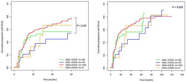 Treatment response (cumulative proportion to achieve partial remission) in 167 essential thrombocythemia (ET) patients according to mutational status.