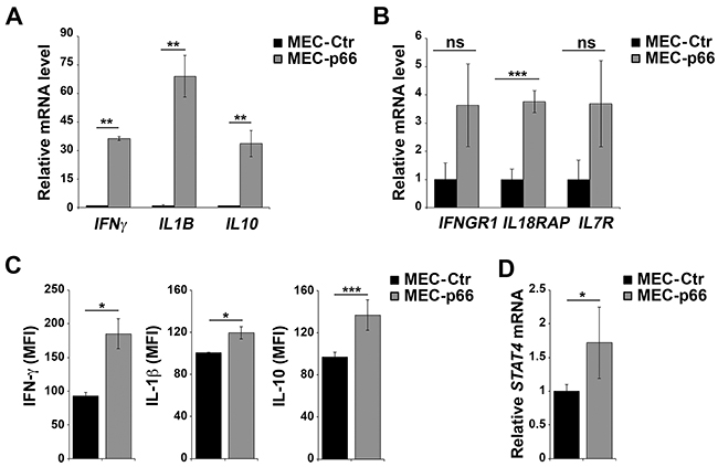 p66Shc alters the expression of several genes linked to the IL-12 pathway in B cells.