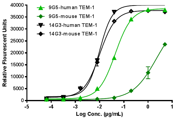 Cross-reactivity of select mAbs with mouse endosialin/TEM-1.