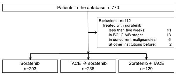 Flow diagram of patient enrollment and distribution into treatment groups.