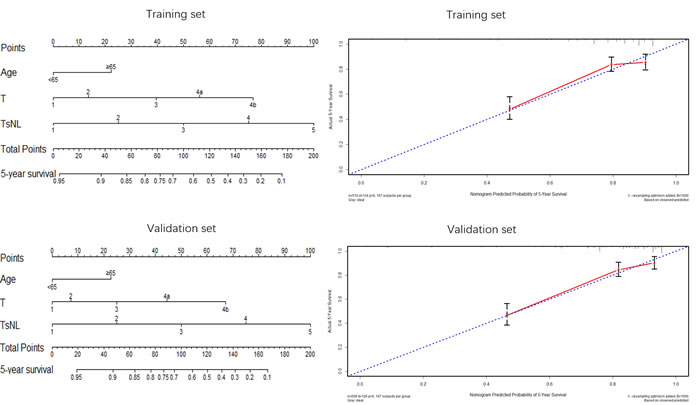 Nomogram plots and calibration curves based on the TsNL staging system.