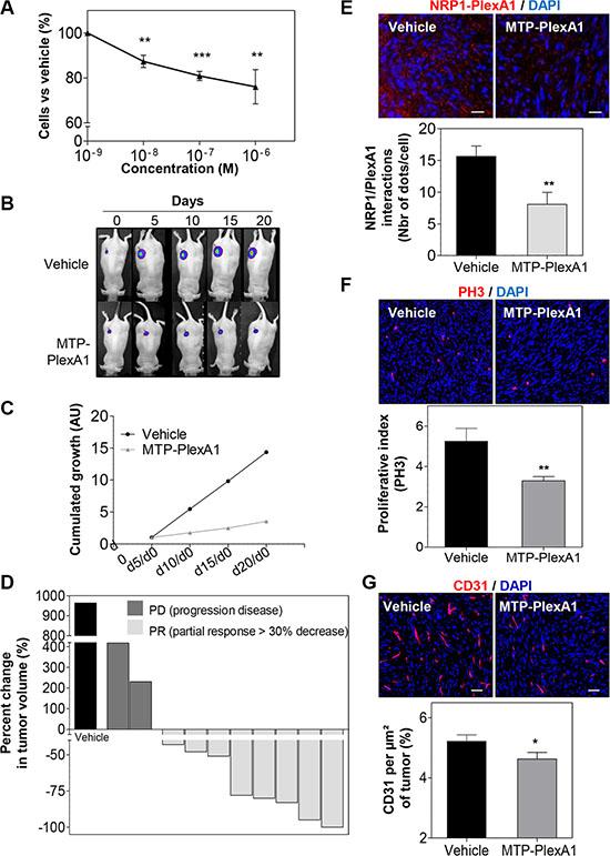 Demonstration of the anti-tumor effect of MTP-PlexA1.