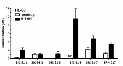 LC-MS/MS quantification of intracellular prodrug and metabolite in HL-60 cells.