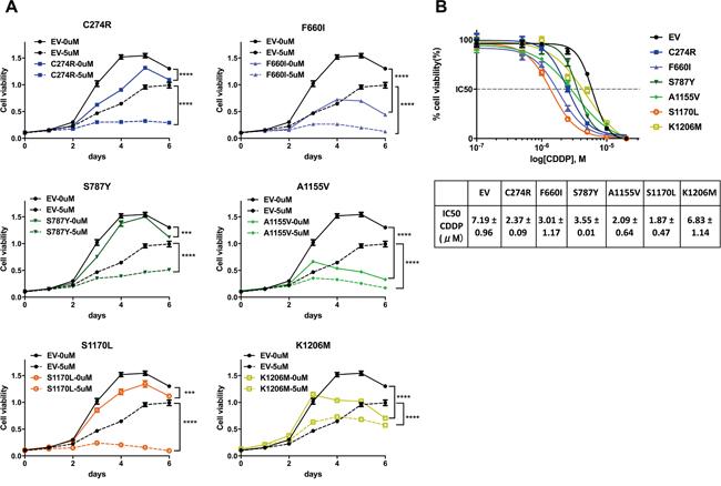 ADAMTS16 mutation improved the response to cisplatin.