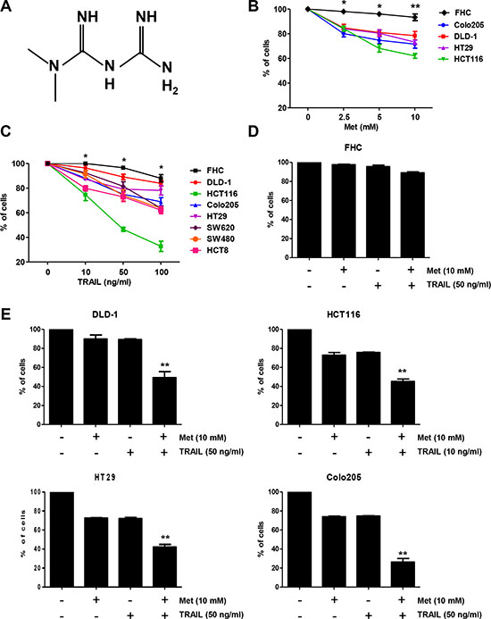 Metformin significantly increased TRAIL-induced cytotoxicity of human CRC cell lines.
