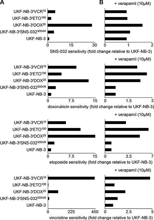 Relative sensitivity of UKF-NB-3 and its ABCB1-expressing sub-lines with acquired resistance to SNS-032 (UKF-NB-3rSNS-032300nM), doxorubicin (UKF-NB-3rDOX20), etoposide (UKF-NB-3rETO100), and vincristine (UKF-NB-3rVCR10) to the cytotoxic ABCB1 substrates SNS-032, doxorubicin, etoposide, and vincristine in the absence or presence of the ABCB1 inhibitor verapamil.