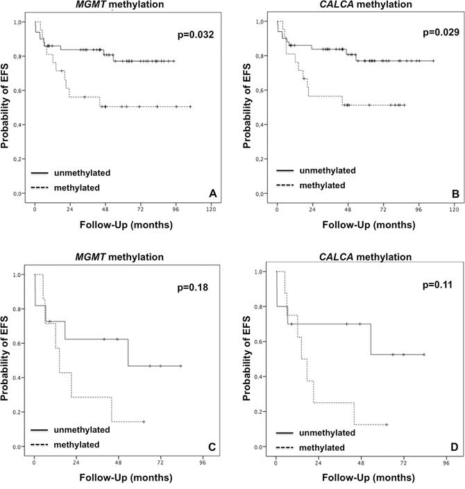 Kaplan-Meier survival curves for event-free survival (EFS) regarding methylation of MGMT or CALCA in the TCGT patients.