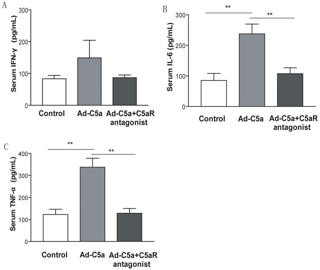 Effect of C5a overexpression on inflammatory cytokines expression.