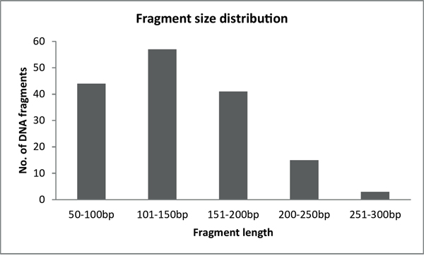 Fragment size distribution of BRCA1-2 samples after the enzymatic fragmentation of multiplex PCR products.