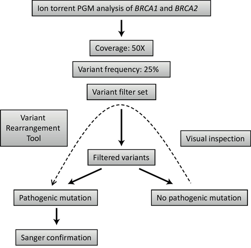 Strategy outline for mutation detection using Ion torrent PGM sequencing data.