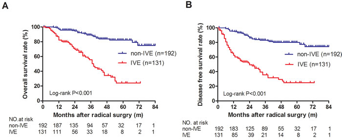 OS and DFS in IVE and non-IVE colorectal cancer patients.