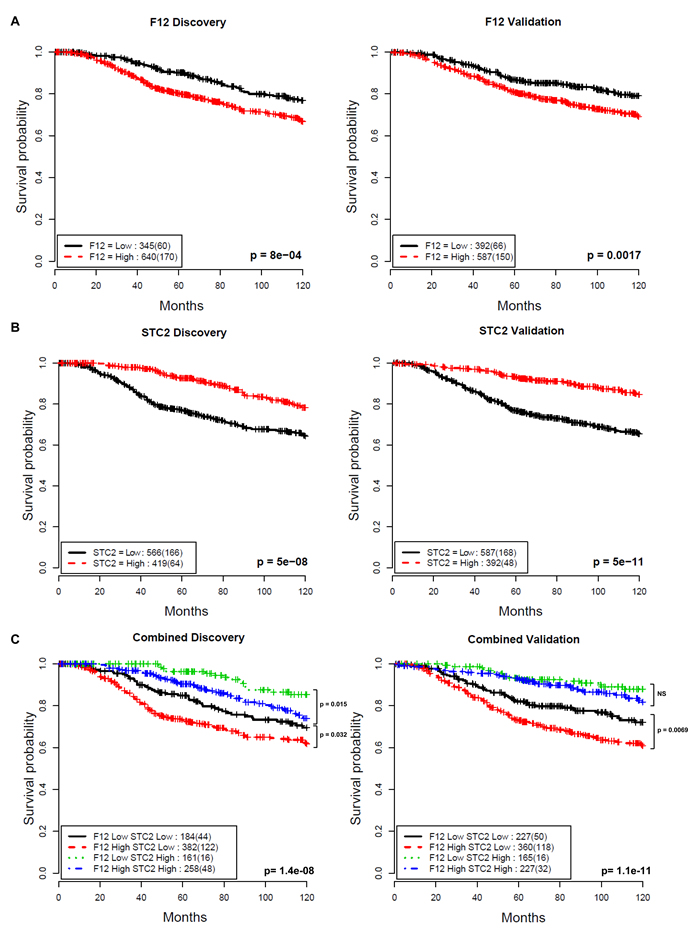 Association between F12 and STC2 gene expression and disease-specific survival in breast cancer.