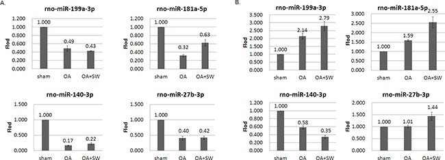 MiRNA expression patterns were evaluated by Quantitative RT-PCR.