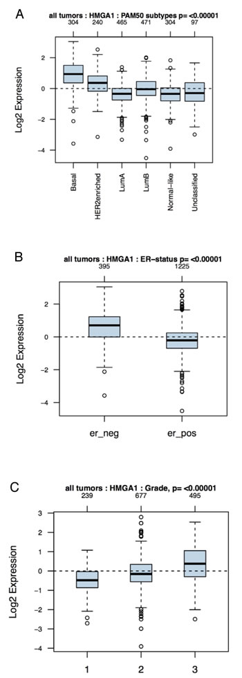 Association of HMGA1 mRNA Levels with Subtype and Tumour Grade in Human Breast Cancers.