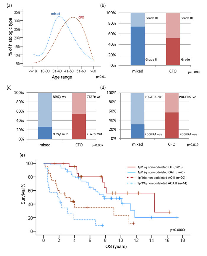 Correlations between clinicopathological factors and molecular variables among 1p/19q intact oligodendroglial tumors.