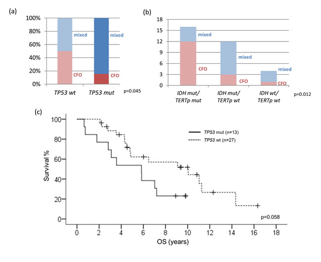 Correlations between