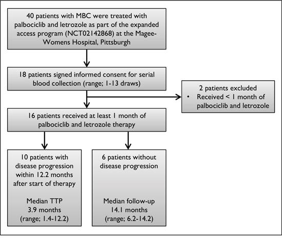 Flow diagram of patient selection.