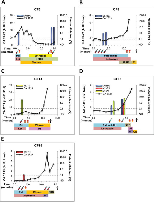 Clinical timeline and mutant allele frequency of ESR1 mutations in serial blood draws from positive cfDNA samples.
