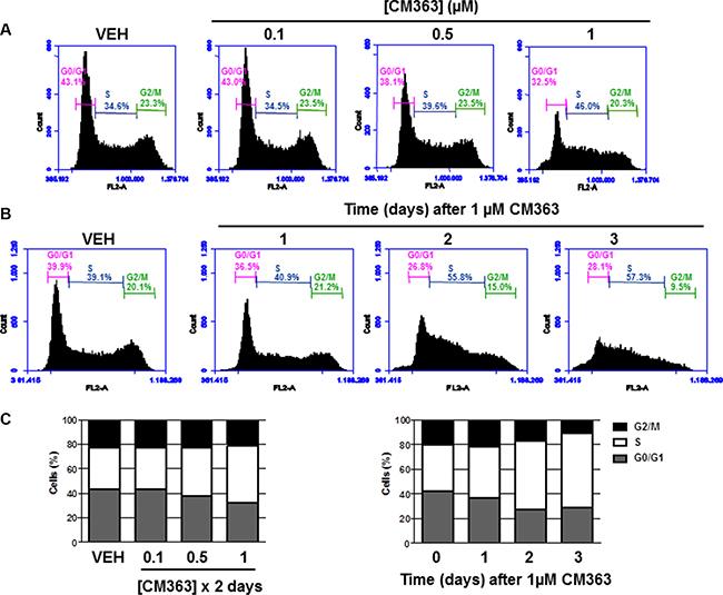 CM363 blocks cell cycle progression in human chronic myelogenous leukemia cells.