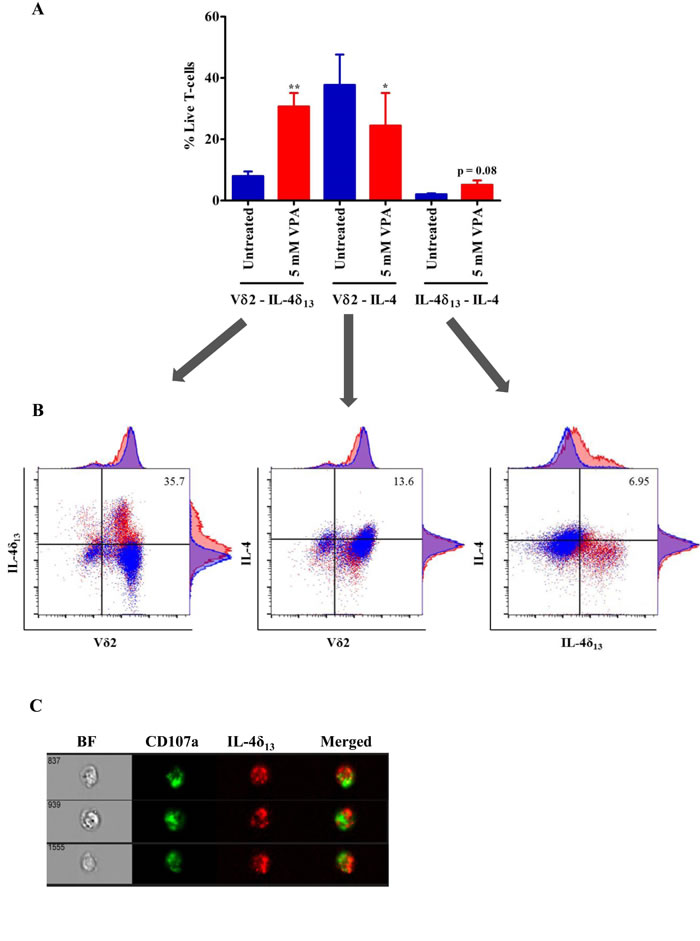 Analysis of non-secretory and mature form of IL-4 in γδ T-cells.