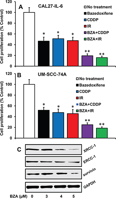 Bazedoxifene reverses cisplatin and radiation-resistance by downregulating XRCC-1, ERCC-1 and survivin.