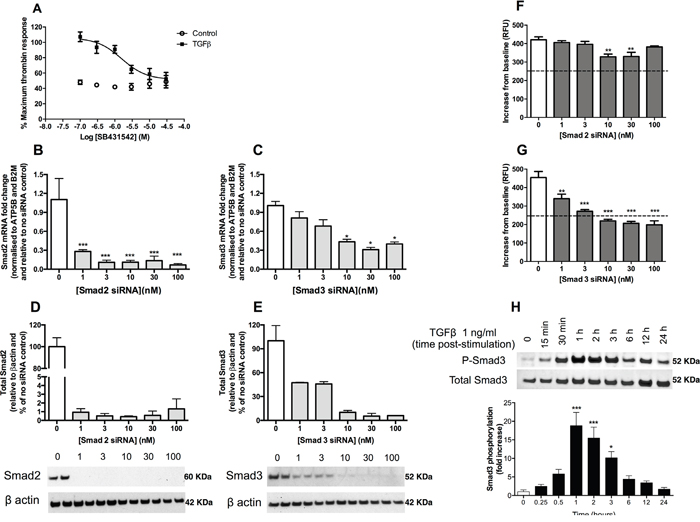 TGFβ upregulates PAR-1 expression in A549 lung adenocarcinoma cells via an ALK5-Smad3-dependent mechanism.